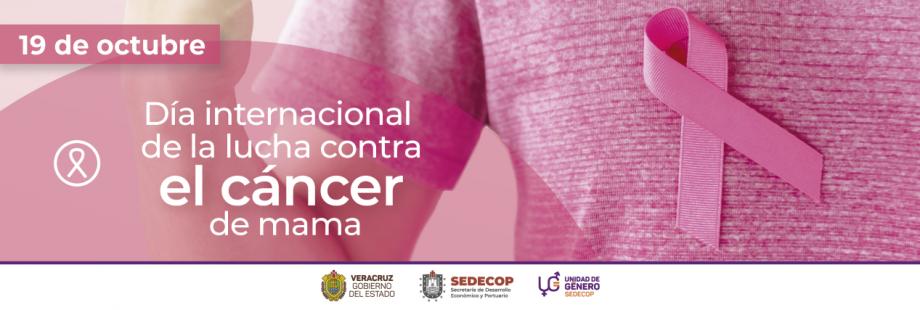 thumbnail_19 de octubre día internacional de lucha contra el cáncer de mama-02